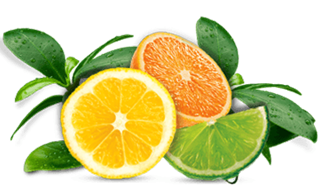 Air Wick Citrus Fragrances
